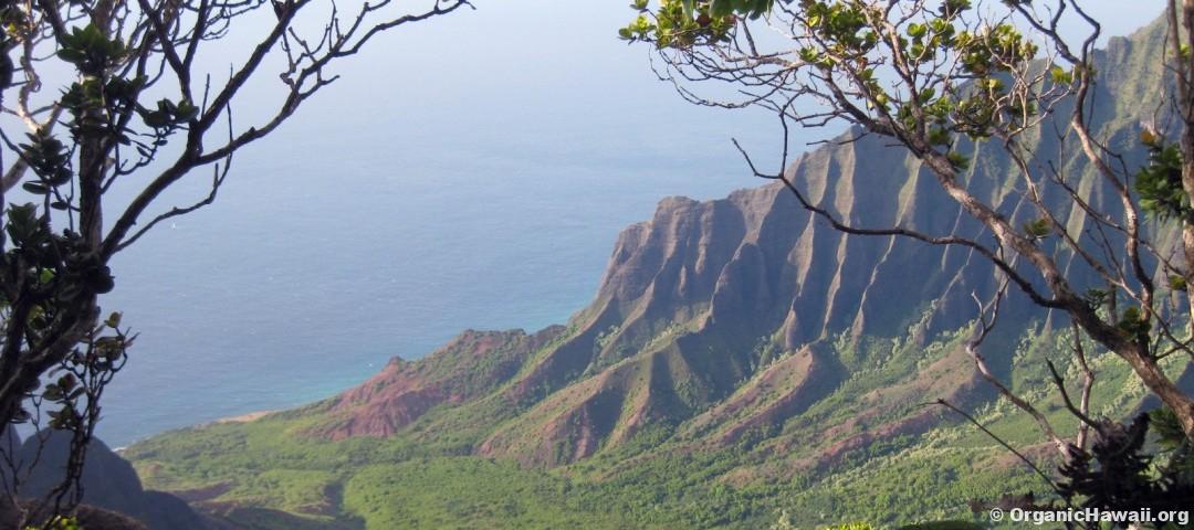 Kalalau Valley Kauai