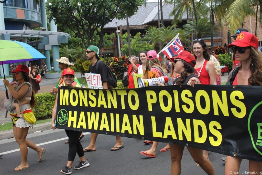 Aloha Aina March Waikiki Hawaii 8.8.15 201520150809_0235