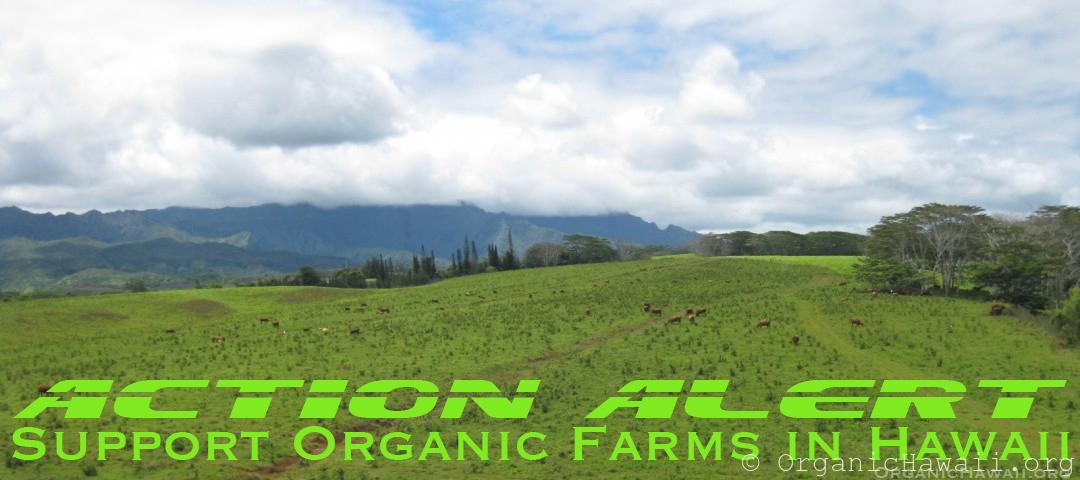 Action Alert Support Organic Hawaii farms