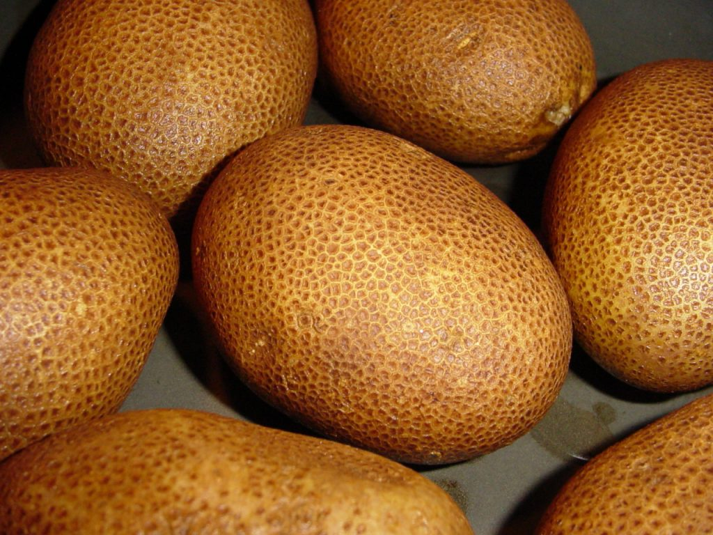 Organically grown Russet Burbanks potatoes. Image credit: Steve Caruso